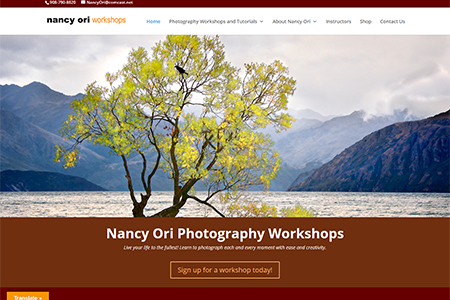 Nancy Ori Workshops